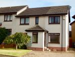 Thumbnail to rent in Alder Drive, Portlethen, Aberdeen