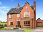 Thumbnail to rent in Brooke Hall Heights, Belfast