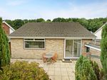 Thumbnail to rent in Eastern Dene, Hazlemere, High Wycombe