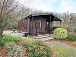 Thumbnail to rent in Modbury, Ivybridge