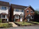 Thumbnail for sale in Lymington Bottom Road, Four Marks, Alton, Hampshire