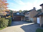 Thumbnail for sale in Stourpaine Road, West Canford Heath, Poole