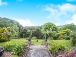 Thumbnail for sale in Mount Pleasant, Crewkerne