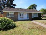 Thumbnail to rent in Plantation Way, Whitehill, Bordon