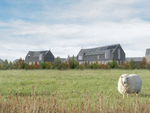Thumbnail to rent in The Steadings, Maudlin Farm, Warkworth, Northumberland