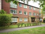 Thumbnail to rent in Hallington Close, Horsell, Woking