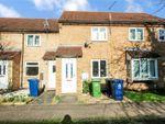 Thumbnail to rent in Ashton Gardens, Huntingdon, Cambridgeshire
