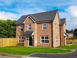 Thumbnail to rent in Armitage Close, Wistaston