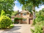 Thumbnail to rent in Woodland Rise, Welwyn Garden City, Hertfordshire