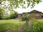 Thumbnail for sale in Mount Pleasant, Great Totham, Maldon