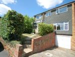 Thumbnail for sale in Sycamore Road, Chalfont St. Giles