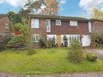 Thumbnail for sale in Palmer Close, Storrington, Pulborough
