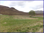 Thumbnail to rent in Kilbride, By Broadford