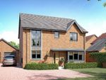 """Thumbnail to rent in """"The Winkfield"""" at Houlton Way, Rugby"""