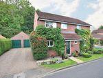 Thumbnail to rent in Millfield, Marton Cum Grafton, York