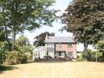 Thumbnail to rent in Morton Old Road, Brading, Sandown