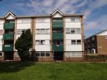 Thumbnail to rent in Anderson Street, South Shields, Tyne And Wear