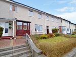 Thumbnail to rent in Burrelton Road, Merrylee