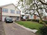 Thumbnail for sale in Grosvenor Close, Torquay