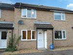 Thumbnail to rent in Redwing Gardens, Spixworth, Norwich, Norfolk