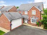 Thumbnail to rent in Nant Y Felin, Abermule, Montgomery, Powys