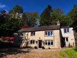 Thumbnail to rent in Eccleriggs Lane, Broughton-In-Furness, Cumbria