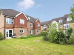 Thumbnail for sale in St Rumbolds Court, Brackley, Northamptonshire