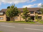 Thumbnail to rent in Ravensthorpe Drive, Loughborough