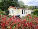 Thumbnail for sale in Wyatts Covert, Denham, Buckinghamshire