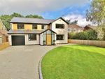 Thumbnail to rent in Larch Grove, Lisvane, Cardiff