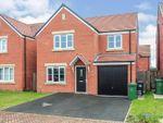 Thumbnail to rent in Carolside Grove, Hampton Gardens, Peterborough