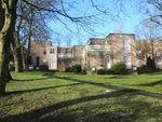 Thumbnail to rent in Park Road, Eccleshill, Bradford