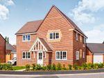 Thumbnail to rent in Hampton Dene Road, Hereford