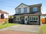 Thumbnail for sale in Falconers Green, Westbrook, Warrington