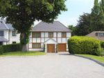 Thumbnail for sale in Albion Park, Loughton