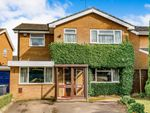 Thumbnail for sale in Yewtree Court, Boothville, Northampton, Northamptonshire