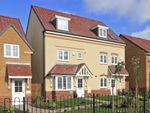 "Thumbnail to rent in ""Woodbridge"" at Ponds Court Business, Genesis Way, Consett"