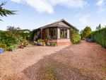 Thumbnail to rent in Ashgrove Road, Rattray, Blairgowrie