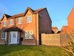 Thumbnail to rent in Holly Bank, Whitehaven