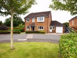 Thumbnail for sale in Dairy Court, Alton, Hampshire