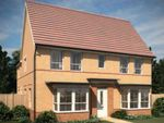 "Thumbnail to rent in ""Alnwick"" at Arnold Drive, Corby"