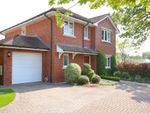 Thumbnail to rent in Ramley Road, Pennington, Lymington, Hampshire