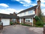 Thumbnail to rent in Primrose Copse, Horsham, West Sussex