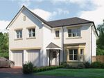 "Thumbnail to rent in ""Jura"" at Glendrissaig Drive, Ayr"