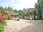 Thumbnail to rent in Willow Lane, Bransgore, Christchurch, Dorset