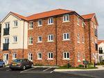 Thumbnail to rent in Scaife Garth, Pocklington, York