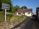 Thumbnail for sale in Strettea Lane, Higham, Alfreton, Derbyshire