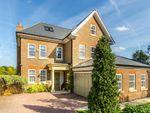 Thumbnail to rent in Marian Gardens, Sundridge Park