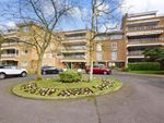 Thumbnail to rent in Sunset Avenue, Woodford Green, Essex