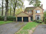 Thumbnail to rent in Ashfield, Oakham